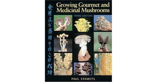 Growing gourmet and medicinal mushrooms cultivation